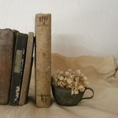 Antique French books.