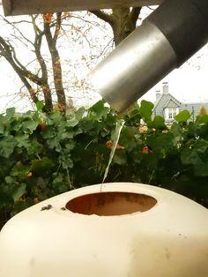 www.rainsaver.nl/tip Kijk maar het vriest al, deksel van de Fluide eraf...