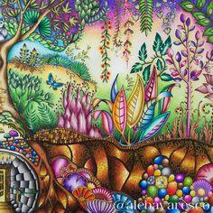 Johanna Basford Colored Pencils Adult Coloring Books Joanna Secret Garden Prismacolor Enchanted Doodle Art Crayon