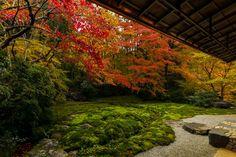 京都写真(Kyoto Photo)の画像