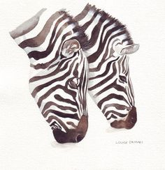Zebra Painting  ORIGINAL Watercolor Painting by Splodgepodge, $39.00