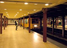 The second metroline of the world – the Millenium Underground of Budapest At the time of its completion in Andrássy Avenue with its sycamore alley, netly arranged villas and elegant tenement. Budapest, Bugs, Beetles, Insects