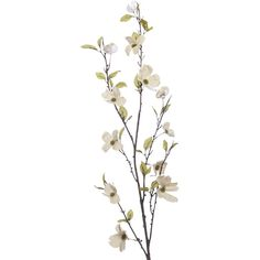 Pier 1 Imports Multi-colored Faux Canvas Dogwood Flower Branch (715 PHP) ❤ liked on Polyvore featuring home, home decor, floral decor, multicolor, canvas home decor, branches home decor, colorful home decor, flower stem and handmade home decor