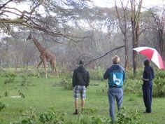 Beware Beach op safari in Kenia.