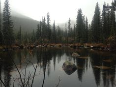 Hiking in the Rocky Mountains of Colorado Autumn Lake, Dark Autumn, Lake Photos, Rocky Mountains, Colorado, Hiking, River, Photography, Outdoor