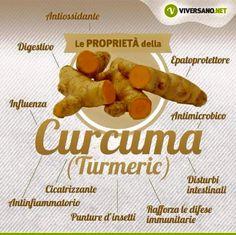 Proprietà benefiche della #curcuma. Wellness Fitness, Health And Wellness, Health Fitness, Healthy Tips, Healthy Recipes, In Natura, Health Remedies, Eating Well, Natural Health