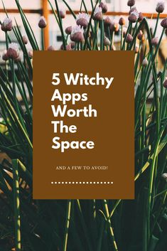 You can have your grimoire at your fingertips with these witchcraft apps!