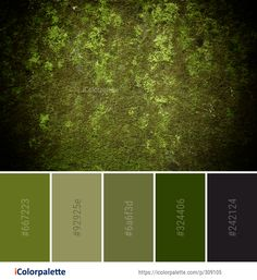 Color Palette Ideas from Green Vegetation Nature Image Nature Color Palette, Green Colour Palette, Green Colors, Color Palettes, Color Combinations Home, Color Combos, Olive Green Bedrooms, Front Door Paint Colors, Forest Green Color