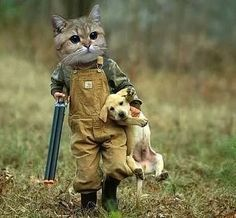 Photo: Gestiefelte Kater......