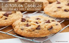 Lactation Cookies: Boost Your Supply with a Cookie! These are the BEST lactation cookies EVER!!