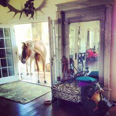 "@tracyporter_poeticwanderlust's photo: ""wine + horse country ~ for real xx #tracyporter #poeticwanderlust #zenmenagerie #sassandblue"""