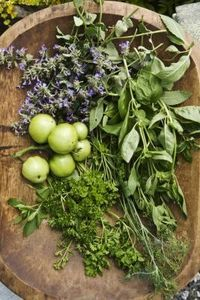 Spices and herbs that pair beautifully with lavender.