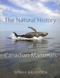 The Natural History of Canadian Mammals / By Donna Naughton / University of Toronto Press North American Beaver, Natural History Museum, University Of Toronto, Photography Competitions, Killer Whales, National Photography, Polar Bear, Vignettes, Mammals