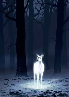Painting Concept for Asher/Eli- Harry's Patronus. Super simple but pretty.
