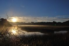 #HOTELS   #SWD   #GREEN2STAY  Phantom Forest Eco Reserve  Knysna river sunrise from our jetty!-  http://green2stayecotourism.webs.com/middleeast-africa-eco-hotels
