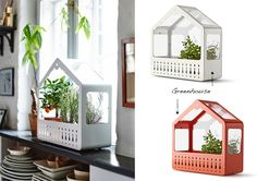orange greenhouse ikea - Google Search