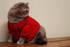 Christmas Red Sweater for Cat, Cat clothes, Warm knit sweater, Pullover for pet, Clothes for cats, Sweater for pet, Knit sweater