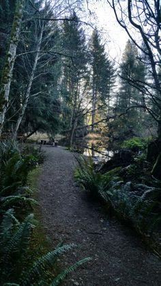 Seal Bay Park,  Comox,  BC Vancouver Island, Canada