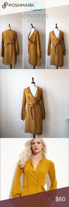 Diane von Furstenberg gold 100% silk wrap dress This sleek and chic Diane von Furstenberg gold 100% silk wrap dress comes with bellowed sleeves and hidden pockets. Untie neck for after work sexy appeal or tie up for business meeting appropriate! Diane Von Furstenberg Dresses