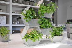 6 idées déco pour vos plantes vertes | Blog Déco | MYDECOLAB