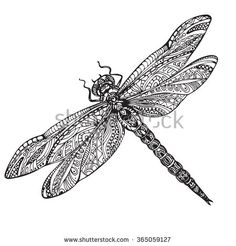 Hand drawn dragonfly in ornate zentangle style. Black and white vector illustration - stock vector