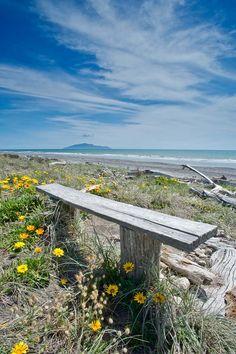Kapiti Coast, North Island, New Zealand