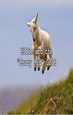 """Read """"Ellie and the """"Crazy Kid"""" Goat"""" #wattpad #general-fiction"""