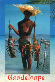 FRANCE (Guadeloupe) - Boy with lobsters in Guadeloupe