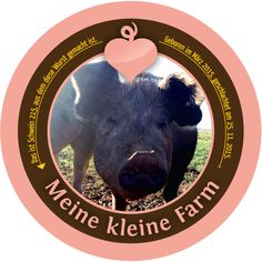 Schwein 215 Animals, Gourmet Meats, Small Farm, Pork, Sticker, Animales, Animaux, Animal, Animais