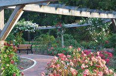 Somerset Gardens: (south west of basking Ridge) gardens- including a 144 acre aboretum, rose garden, fragrance garden, perennial garden, and a shrub garden