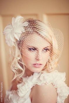 Bird Cage Blusher Veil with dual combs by AlisaBenay on Etsy