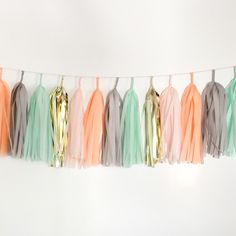 Mint Peach Pink Grey and Gold Tissue Tassel Garland – Paper Crush, 12' of twin, $34