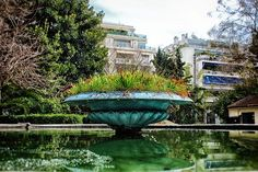 #Athens #Athensvibe #Athensvoice #ig_athens #eyeofathens #we_capture_athens #loves_athens #in_athens #ig_greece #loves_athens #water #fountain #pond