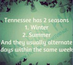 True for Georgia too