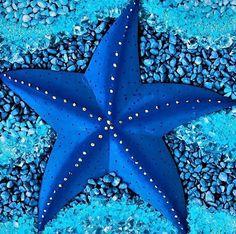 19 bizarre and beautiful starfish species unterwasserwelt basteln pappteller fische meerestiere Starfish Species, Image Bleu, Deep Blue Sea, Ocean Creatures, Cool Sea Creatures, Blue Aesthetic, Sea World, Ocean Life, Ocean Ocean
