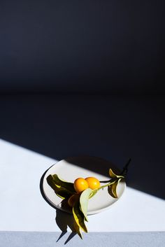 Food photography light and shadow – Hard light Object Photography, Fruit Photography, Food Photography Styling, Still Life Photography, Photography Composition, Product Photography, Ombres Portées, Photo Food, Prop Styling