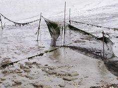 Fishing net Groningen Netherland