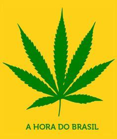 Entrevista: André Kiepper, o cidadão que propôs ao Senado regular a maconha no Brasil