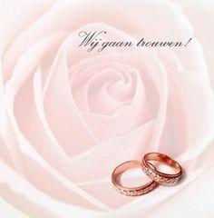 Trouwkaart: Grote roze roos met twee ringen. Trouwkaarten online maken en bestellen. Prachtige trouwkaarten met ringen: kies een trouwkaart, schrijf de tekst, en vraag een gratis proefdruk op! http://www.trouwpost.nl/trouwkaarten/ringen/