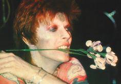 David Bowie: Ziggy Stardust in New York City, by Leee Black Childers.