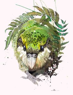 Official Rachel Walker Page. New Zealand watercolour, spray paint, pen and ink artist creating splashy celebrations of native and rare animals. Watercolor And Ink, Watercolor Paintings, Watercolor Trees, Watercolor Portraits, Watercolor Landscape, Abstract Paintings, Watercolours, Art Paintings, Beautiful Birds