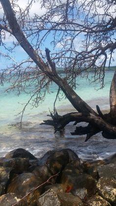 Cosmy beach. Trinitè