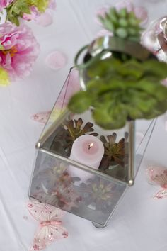 Lantern centerpiece with a pink candle inside and green succulents. Pink and Green. Photo Credit : A. Mordant - Click to read full instructions on how to do here: http://www.wedotahiti.com/how-to-decorate-a-winter-themed-table #tahitiweddingplanner #tahitiweddingpackage