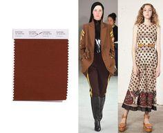 colores de moda primavera 2018 Emperador, marrón chocolate.