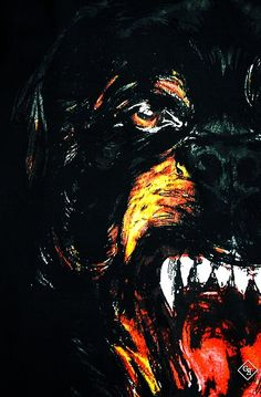 Givenchy Rottweiler Iphone Wallpaper