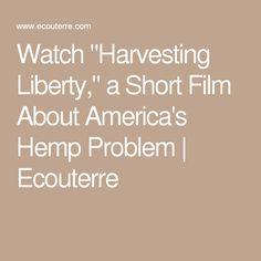 "Watch ""Harvesting Liberty,"" a Short Film About America's Hemp Problem 