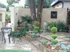 """See 1 tip from visitors to Designer Gardens Landscaping. """"Use Designer Gardens Landscaping to landscape your garden, build you a koi pond, swimming. Pretoria, Beautiful Gardens, Garden Landscaping, Pond, Garden Design, Swimming Pools, Patio, Landscape, Gardens"""