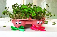 Egg-box cress heads craft: Haven't our terrible twins got messy hair? Let's cut it all off and have egg and cress sarnies.