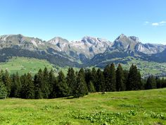 Toggenburg, Switzerland; a very bautiful place on earth!