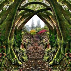 MAGICAL ENTRANCE TO THE SECRET GARDEN, Portland, Oregon